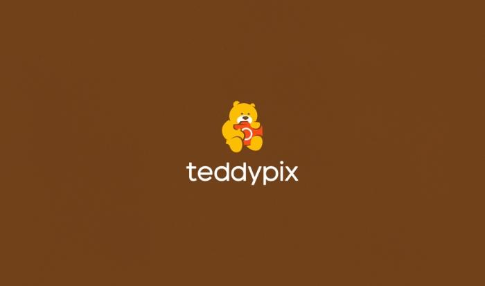 TeddyPixLogoDesignAncitis