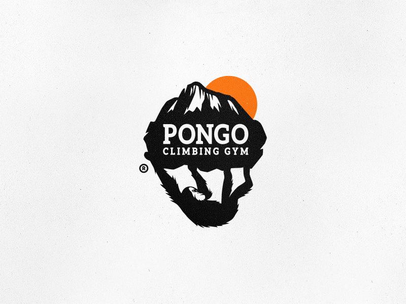 Pongo Climbing Gym